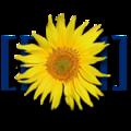 Миниатюра для версии от 18:45, 14 января 2013